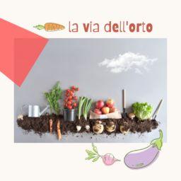 """""""La via dell'orto"""": un emporio di comunità maremmano con prodotti biologici ed etici"""